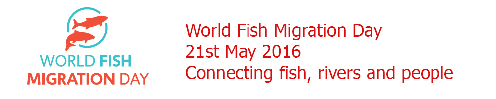 World Fish Migration Day 2016