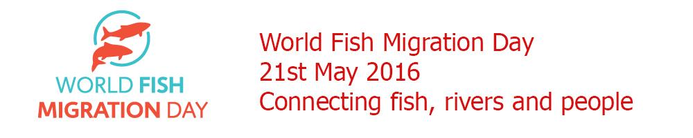 World Fish Migration Day 2016