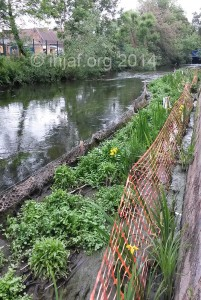 Hogsmill habitat improvement project: June 2014