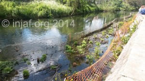 Hogsmill habitat improvement project: May 2014