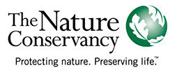 The nature conservancy 2