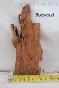 Bogwood is a popular wood for aquarium use