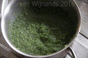 The gloopy stage of homemade fish food